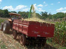 Secretaria da Agricultura fortalece a Agricultura Familiar
